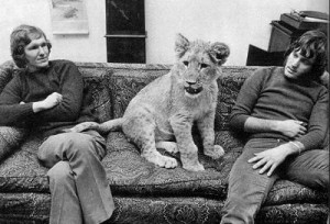 Christian the Lion or Lion Re Union