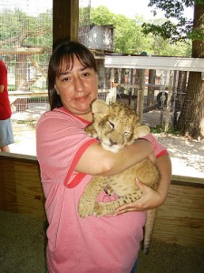 Big cats are bred to be used as petting and photo props under the guise of conservation