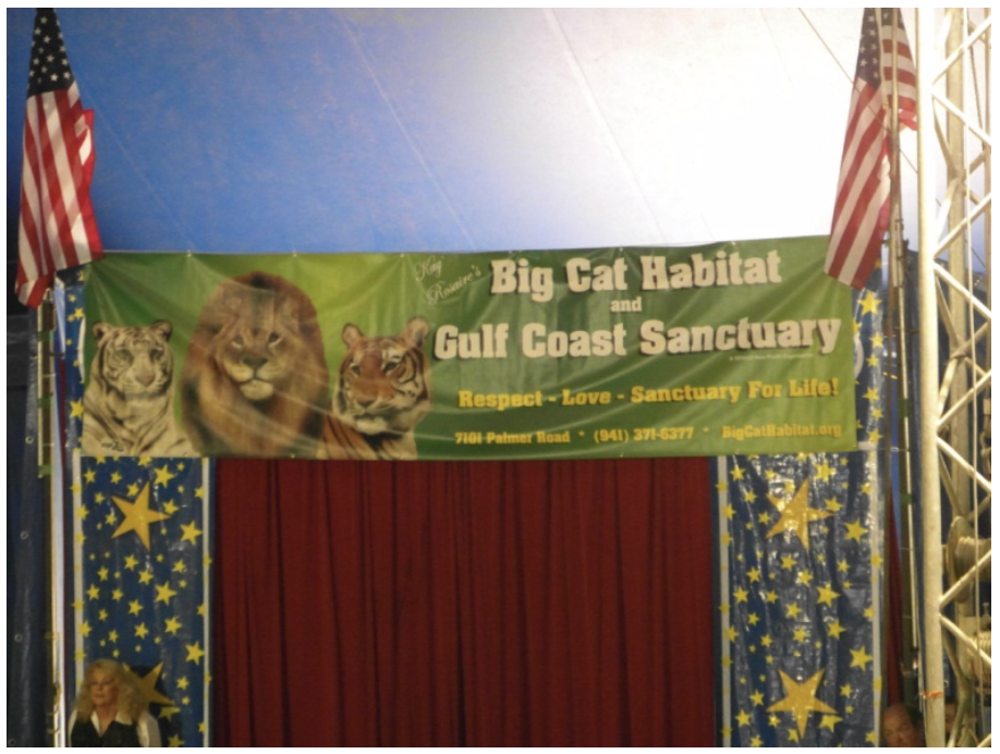 Big-Cat-Habitat-Gulf-Coast-Sanctuary-Kay-Clayton-Rosaire-038