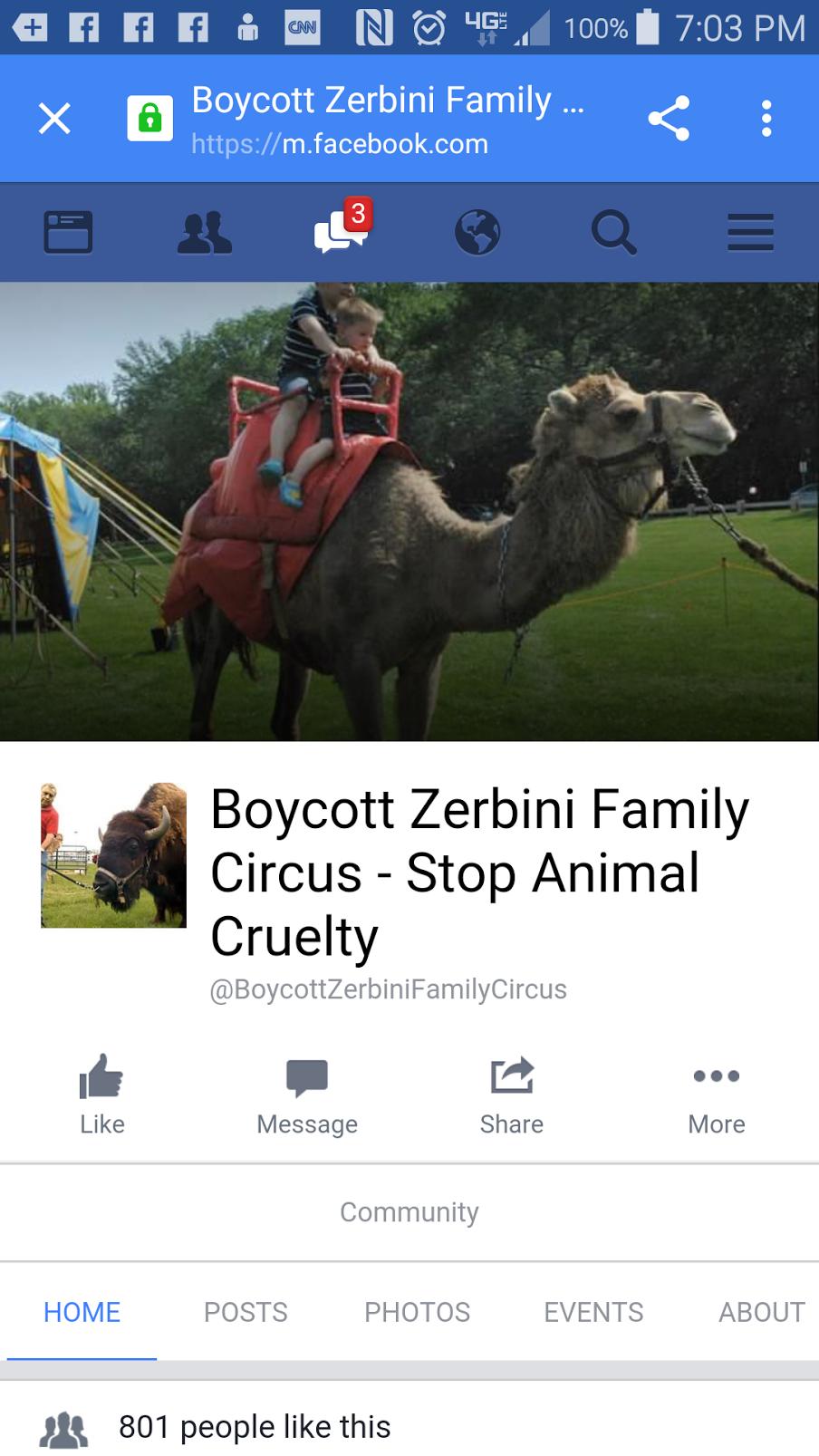 Boycott Zerbini Family Circus