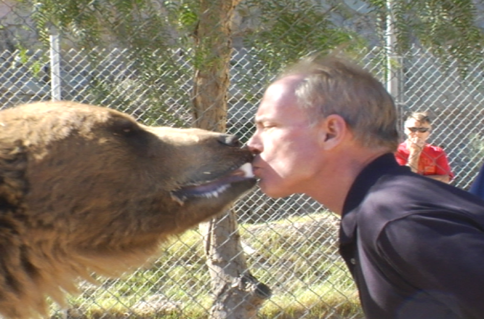 Brian McMillan Bear