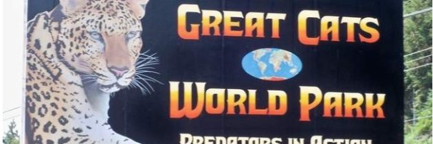 Great Cats World Park Craig Wagner