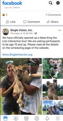 Single Vision Carl Bovard Pimping Lion Cubs2