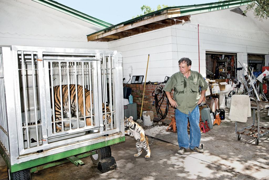 Vernon-Yates-Wildlife-Rescue-and-Rehab-001