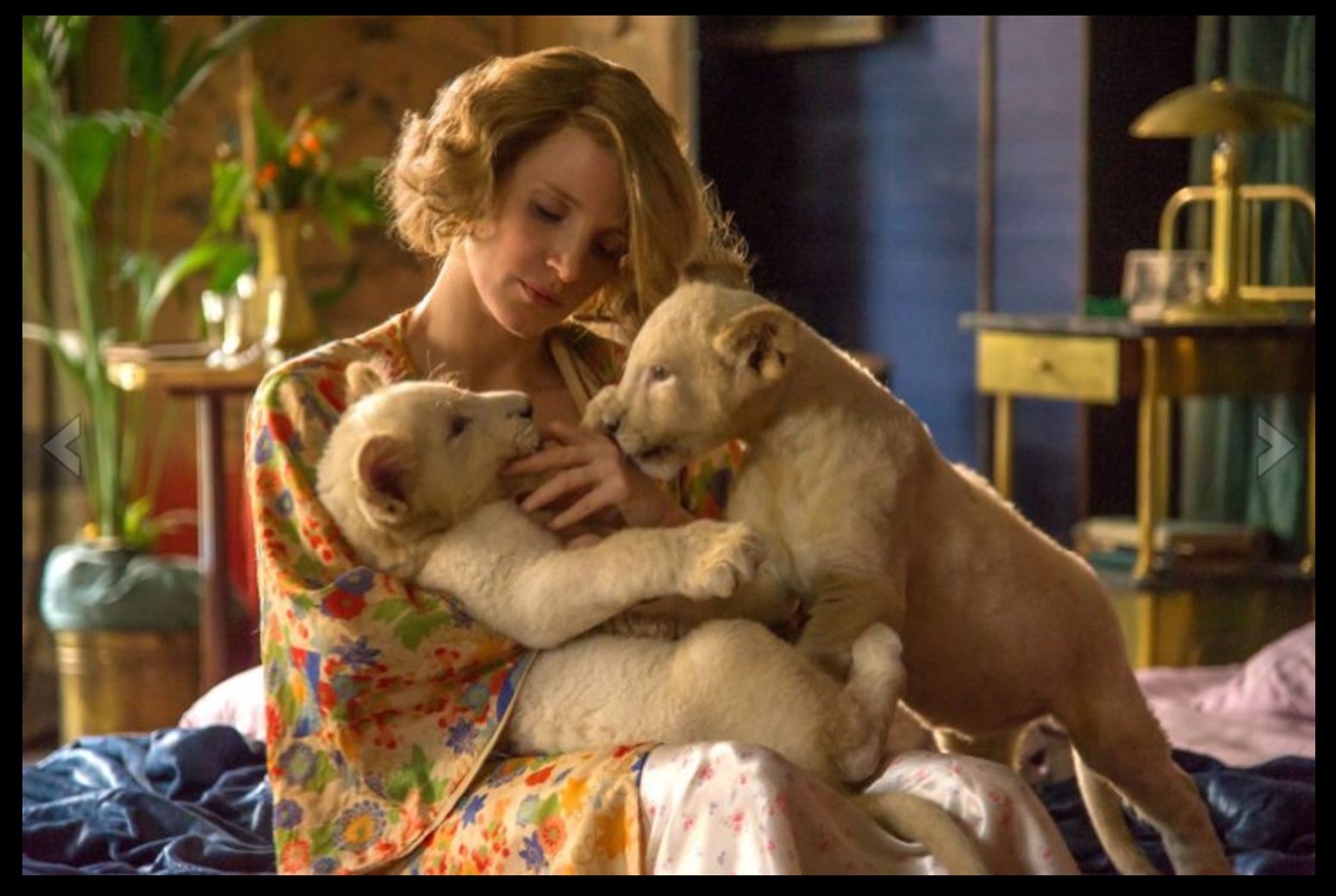 Zookeepers Wife Movie