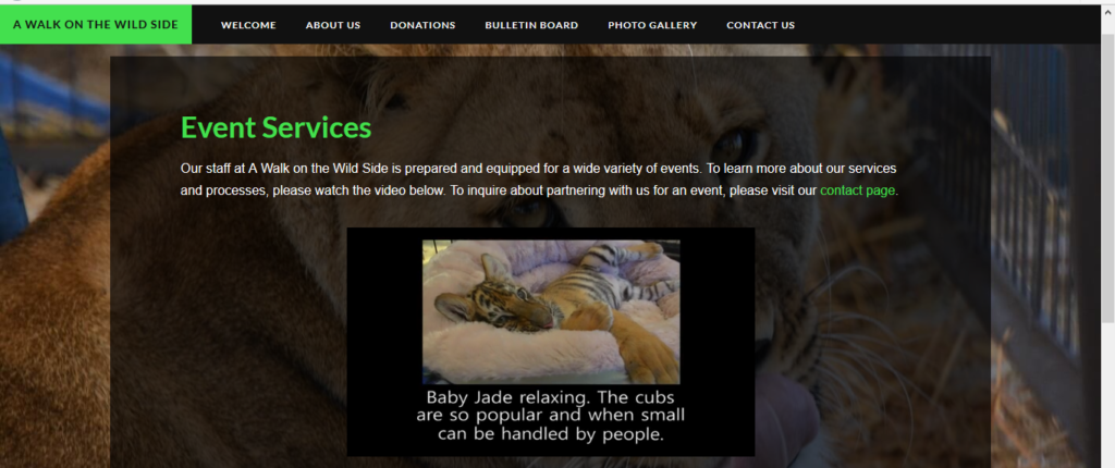 cub petting ad on website A Walk On The Wild Side