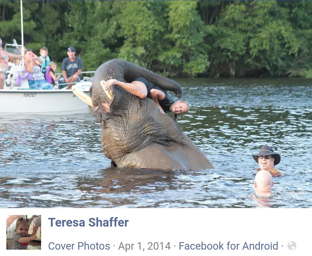 Teresa Shaffer picture